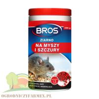 MYSZY I SZCZURY ZIARNO / 300G